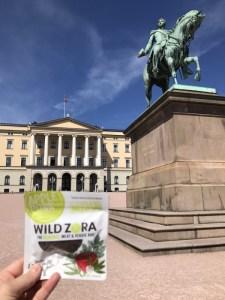 Wild-Zora-Oslo