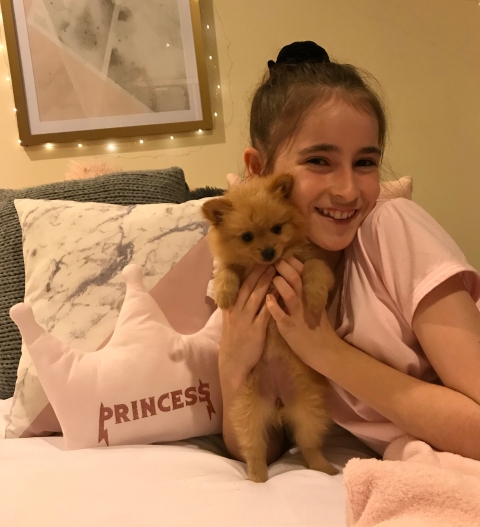 bella-new-puppy-e1519616388572.jpg