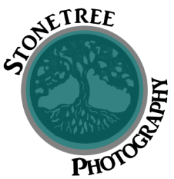 stonetreephotography-teal